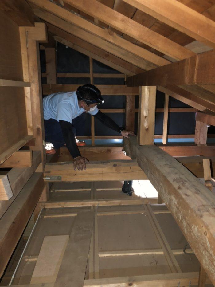 TOUKAI-0。屋根裏に登って、柱と筋交いの確認中です。耐震診断補強相談士による無料耐震診断の後、補助金を活用して耐震補強計画の作成をしていきます。