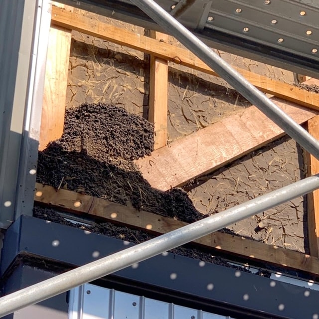 コウモリが侵入しないようにトタンの張替えをしました。コウモリが侵入し巣を作るとフンや尿によるシミがトタンのサビの原因になります。